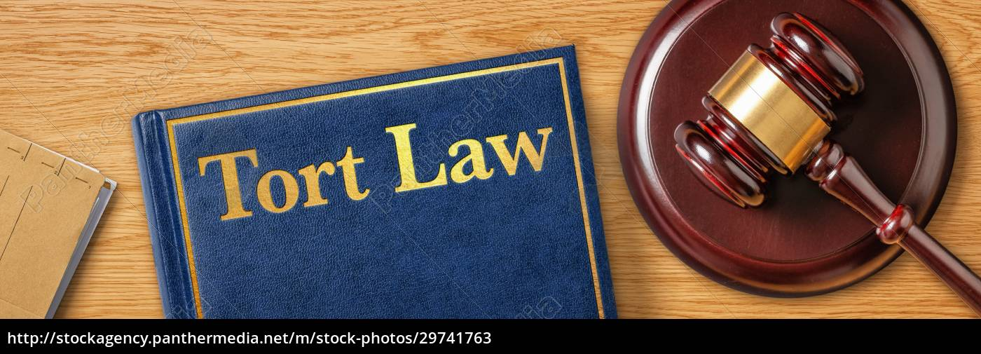 a, gavel, with, a, law, book - 29741763