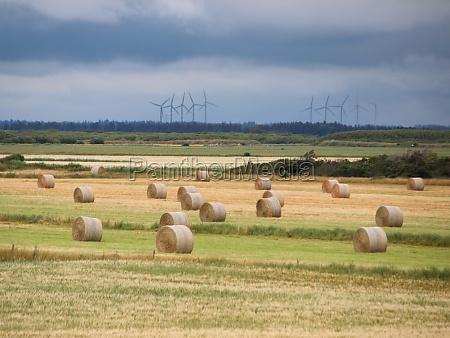 landschaft mit runden strohballen und wolken