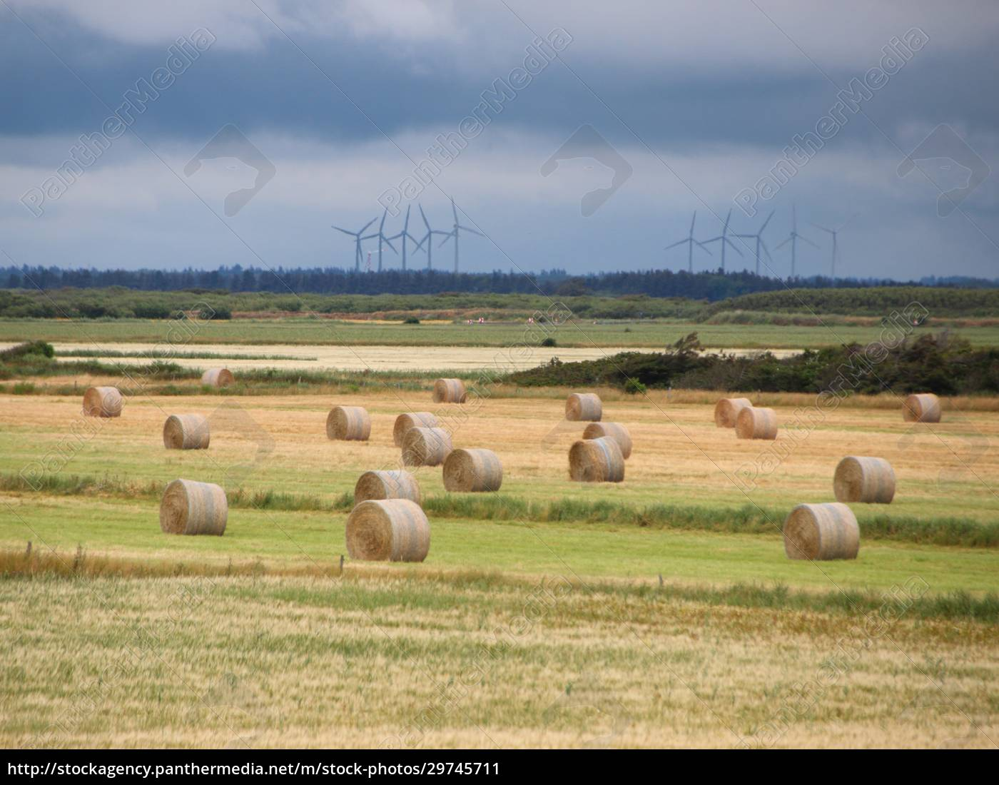 landschaft, mit, runden, strohballen, und, wolken - 29745711
