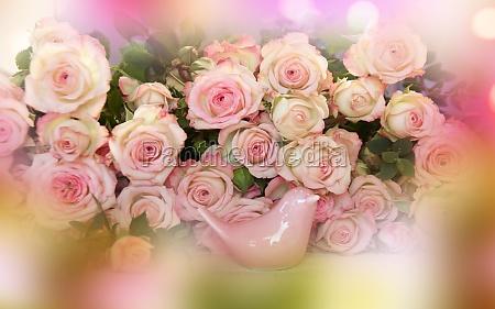 rosa rosen muetter tag stillleben