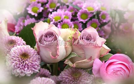 rosa blumen muttertag stillleben