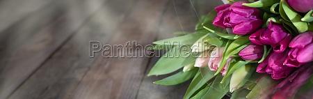 lila tulpen auf dunklem rustikalem holz