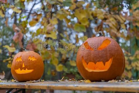 halloween kuerbis herbst stillleben