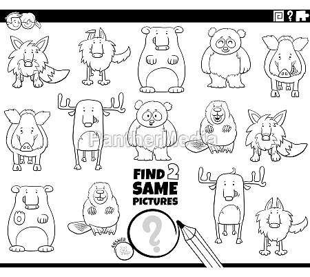 find, two, same, animals, game, coloring - 29844918