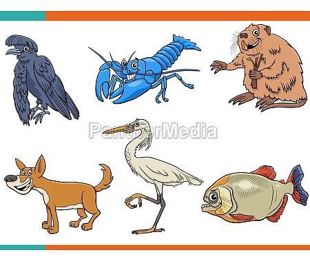 cartoon, lustige, wilde, tiere, comic-figuren, setzen - 29845024