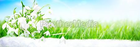 Medien-Nr. 29863870
