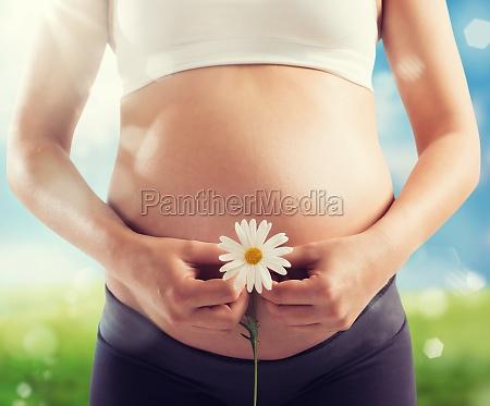 schwangerschaftgeburt, des, lebens - 29871929