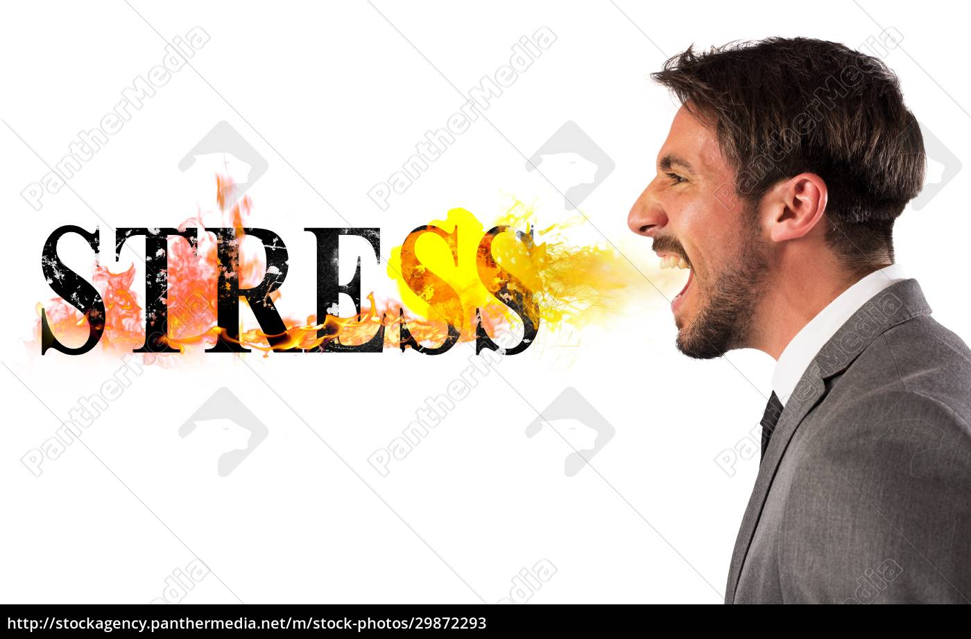 stressed, business, life - 29872293