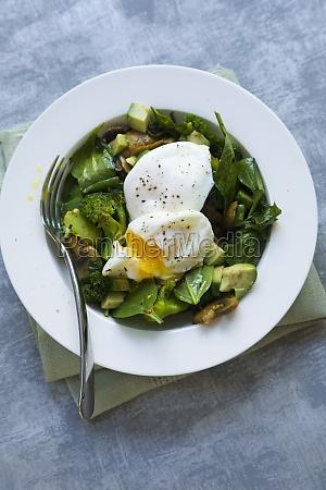 green, brekkie, bowl - 29878577