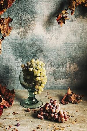 stillleben mit trauben und herbstblaettern