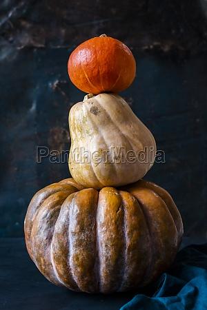 halloween kuerbisse