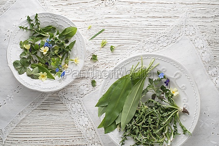 gesunde fruehlingspflanzen lebensmittelzutaten