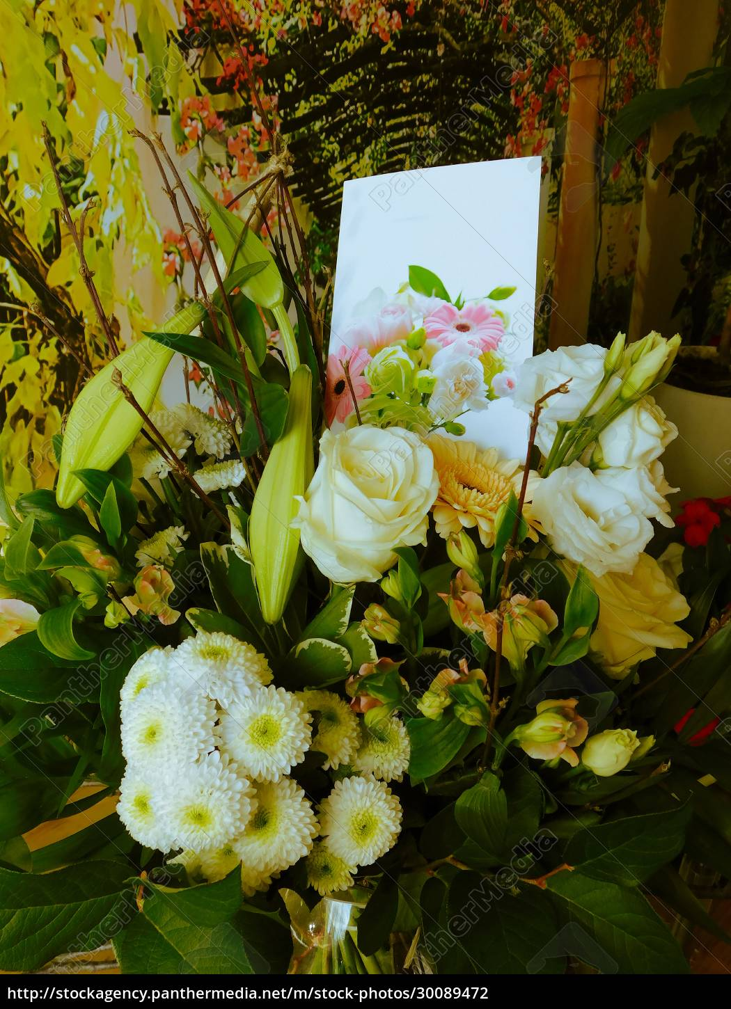 , the, bouquet, as, a, sign - 30089472
