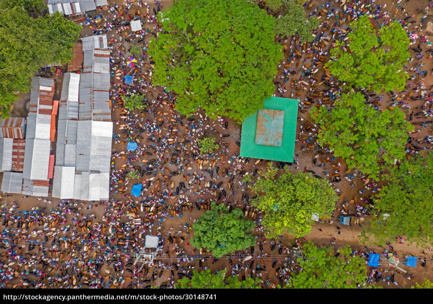 aerial, view, of, people, in, a - 30148741