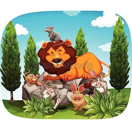 animals - 30189336