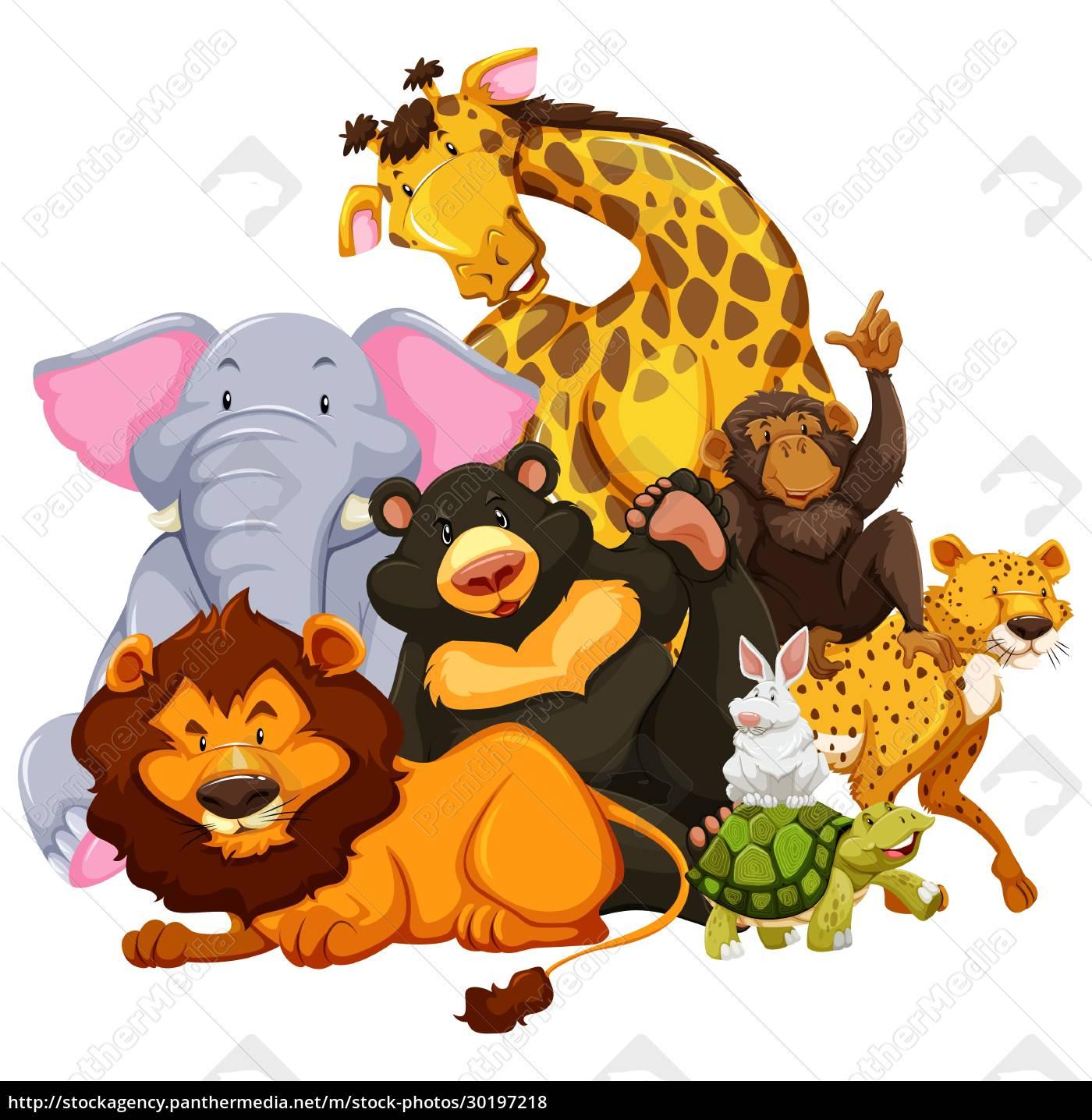 animals - 30197218