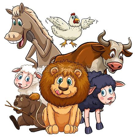 animals - 30209765