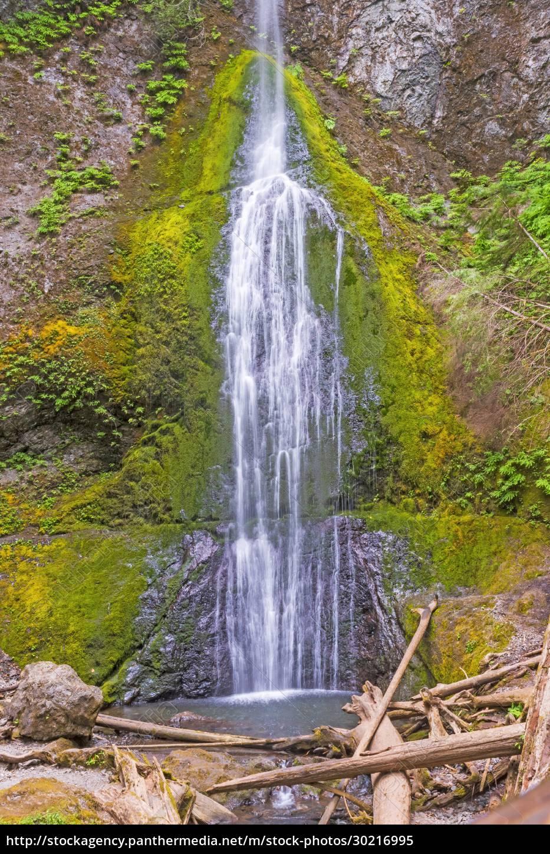 hidden, waterfall, in, a, temperate, rainforest - 30216995