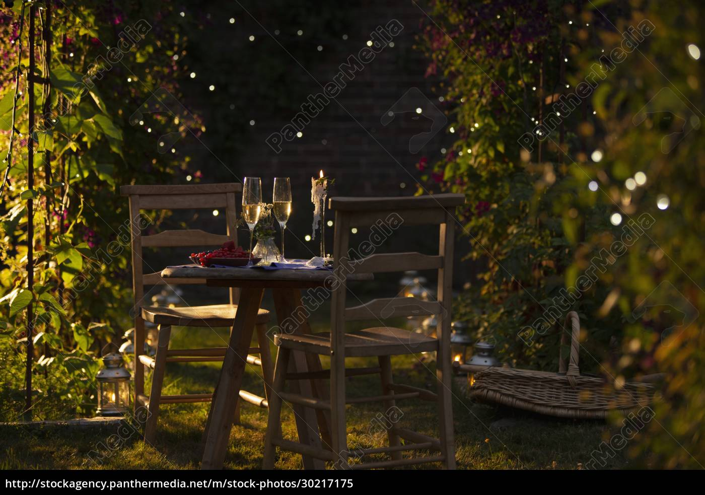 champagne, and, red, currants, on, idyllic - 30217175