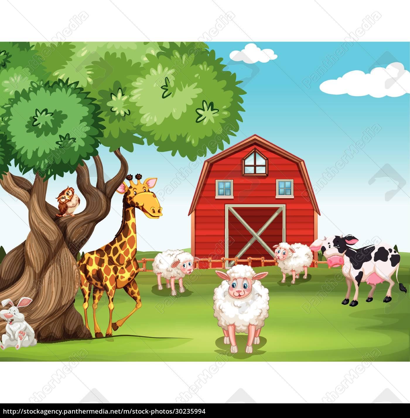 farm, animals, and, wild, animals - 30235994