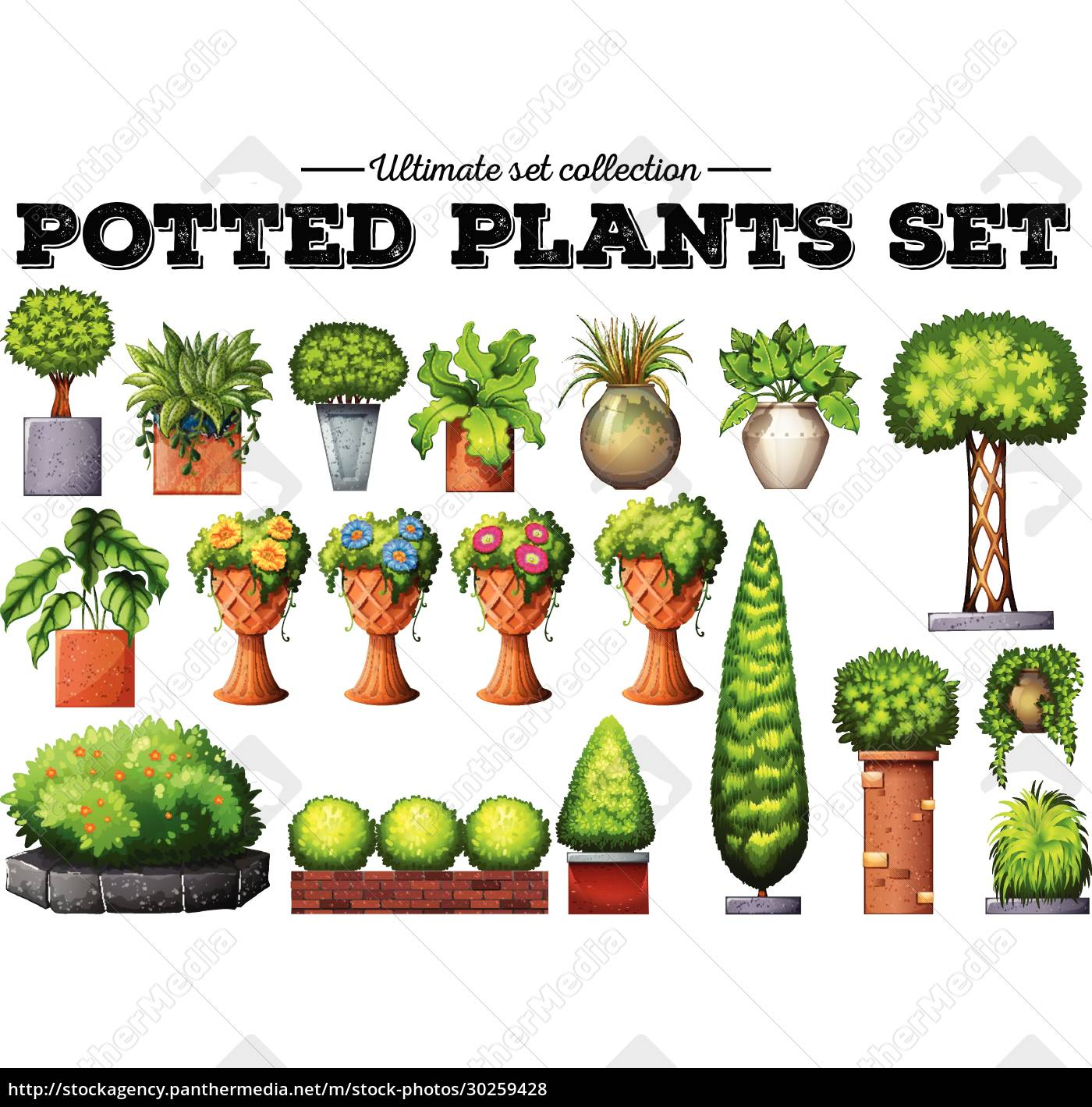 potted, plants, in, the, garden - 30259428