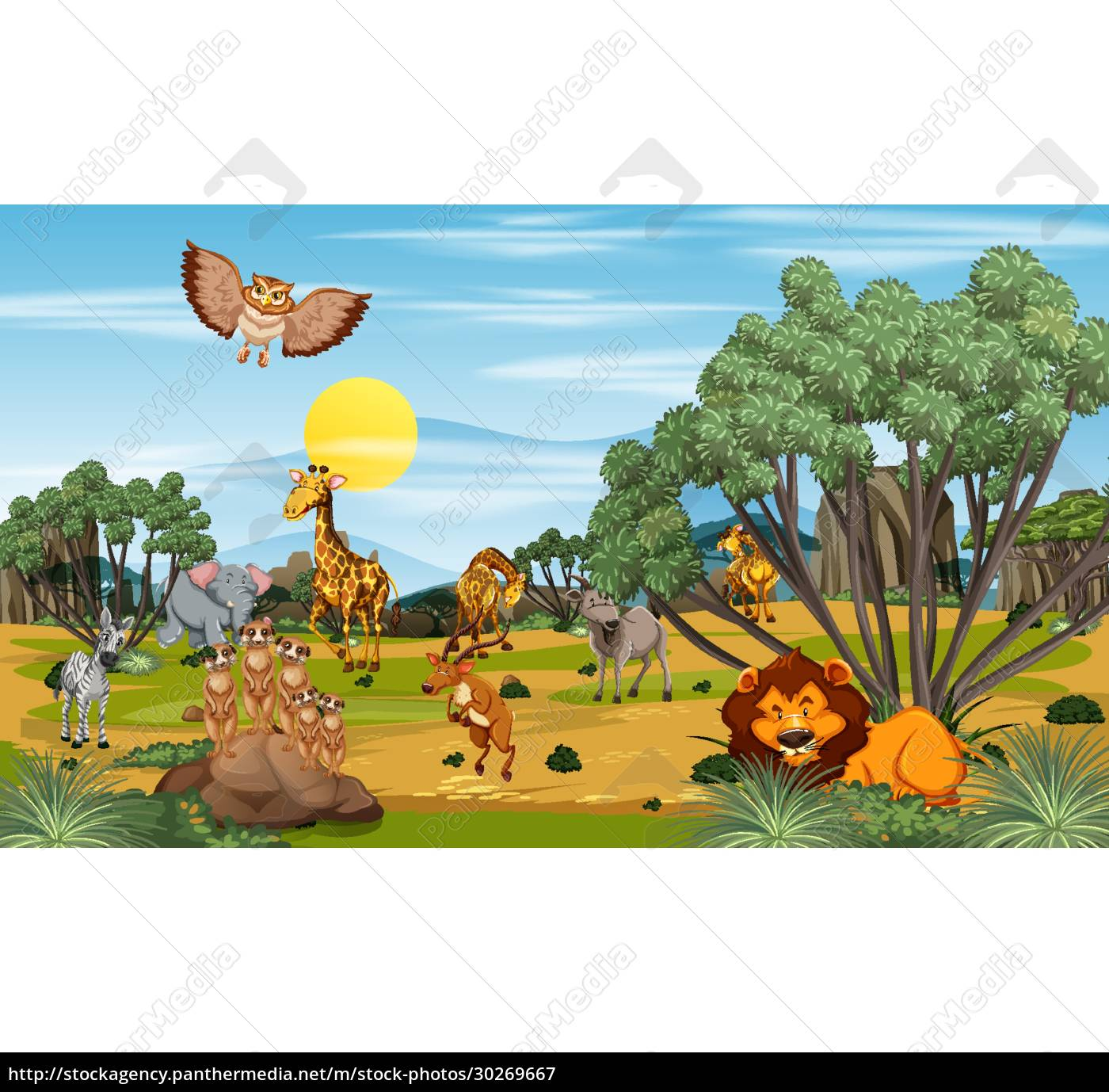 many, different, animals, in, the, forest - 30269667