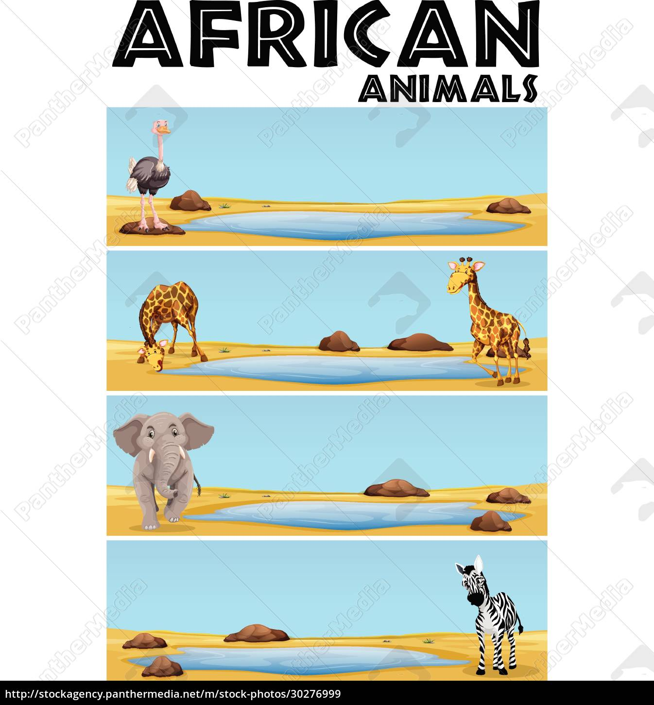african, animals, by, the, pond - 30276999