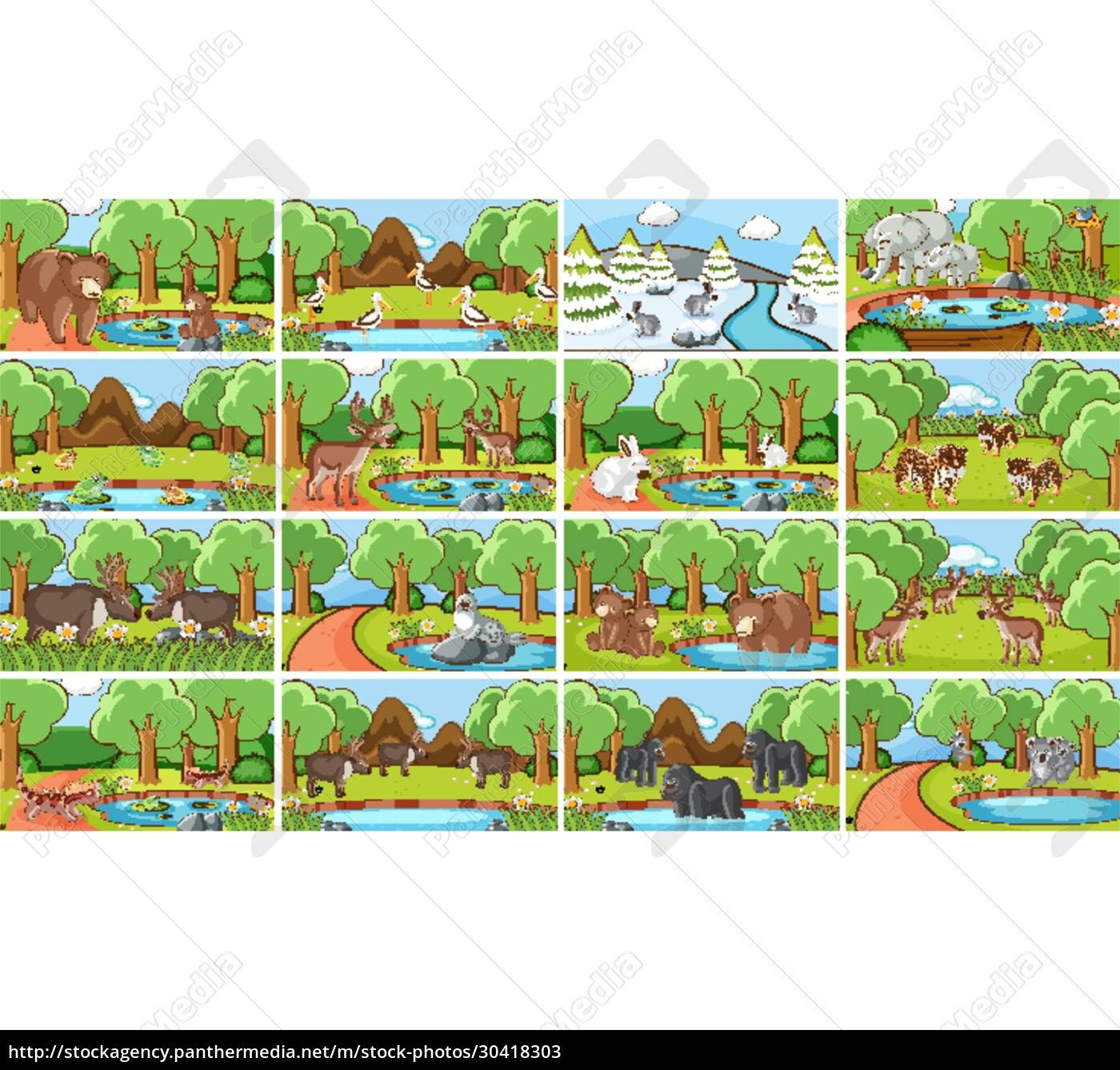 hintergrundszenen, von, tieren, in, freier, wildbahn - 30418303