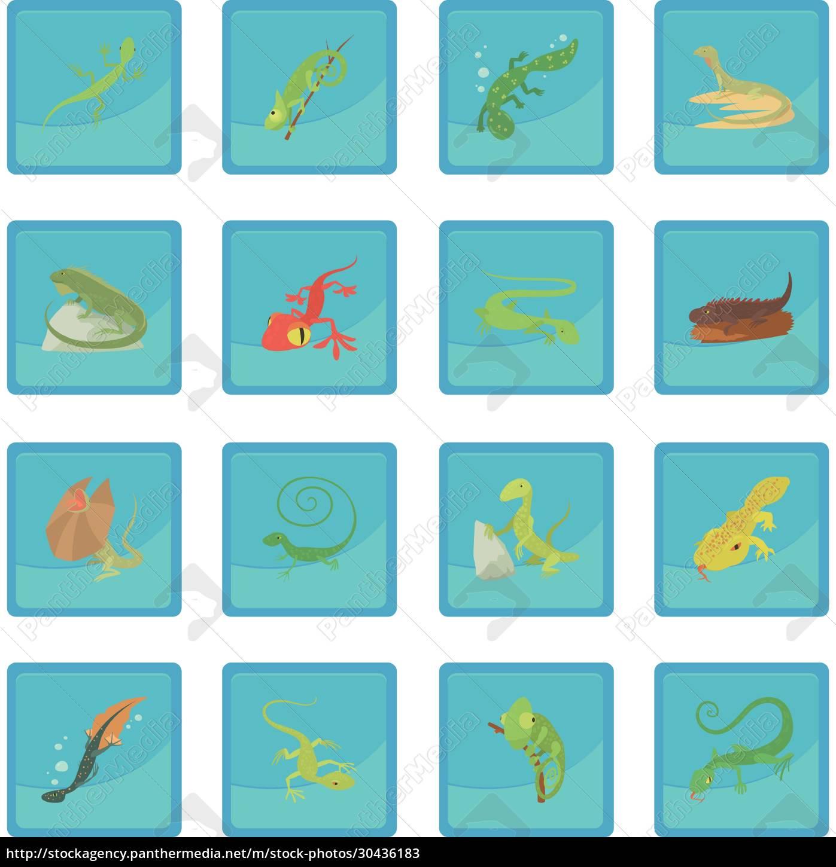 lizard, type, animals, icon, blue, app - 30436183