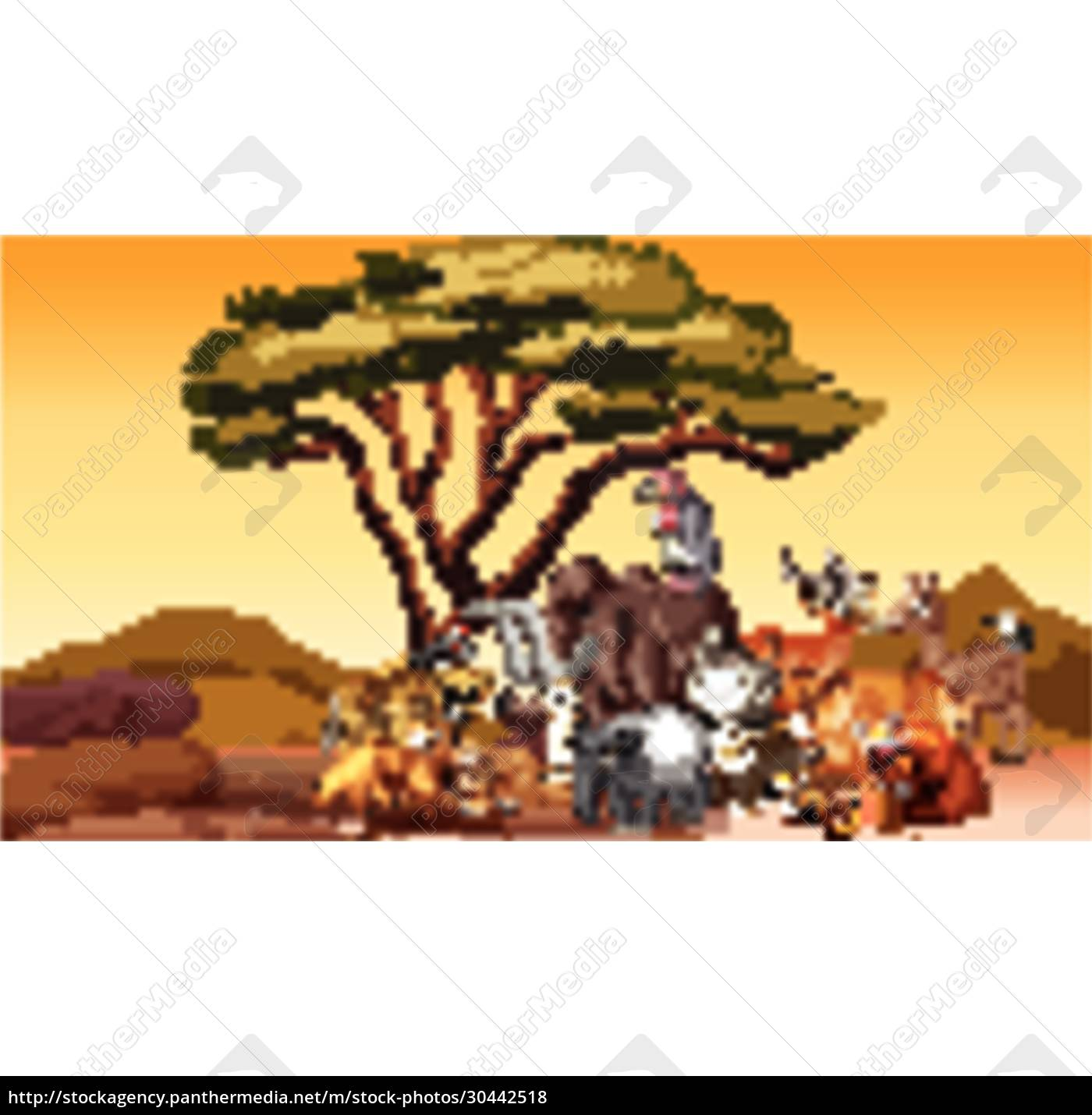 wild, animals, in, the, desert, field - 30442518