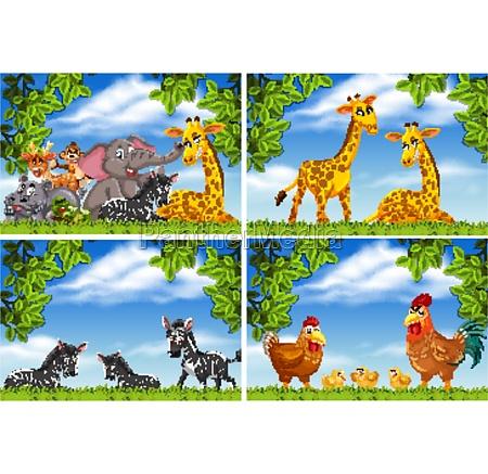 set, verschiedener, tiere, in, naturszenen - 30507700