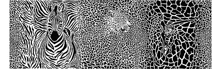 background, with, leopard, , giraffe, and, zebra - 30686184