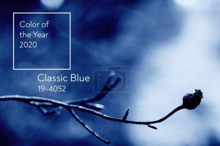 farbe blau hintergrund bunten entwerfen himmel