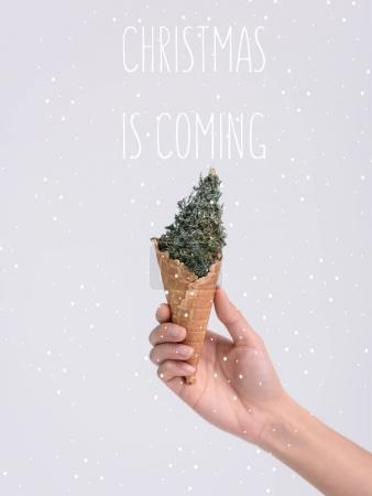 festlich gruss gluecklich urlaub weihnachten person