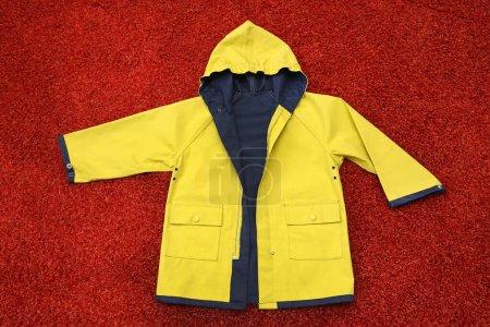 gelb, Kleidung, Schutz, Kleid, Motorhaube, Jacke - B359062932