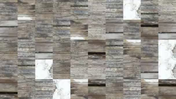 Video B368949890