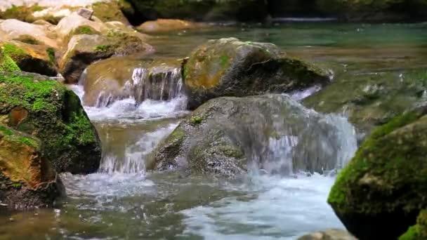 Video B20352013