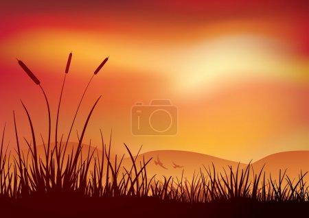 Farbe, Vektor, Hintergrund, Objekt, Grafik, Illustration - B22813908