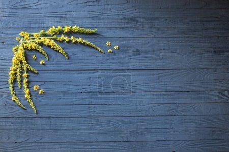 tisch gruen gelb blau hintergrund design