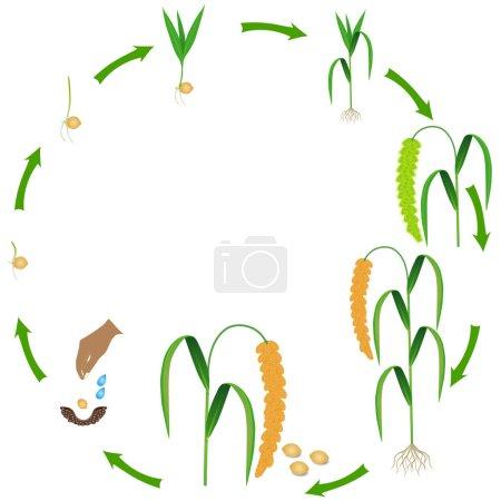 weiß, Vektor, Hintergrund, Illustration, Isoliert, Kunst - B281124682