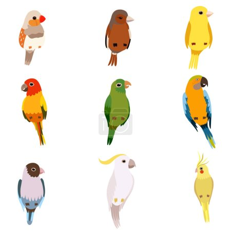Farbe, Vektor, Bunt, Illustration, eingestellt, klein - B273213258