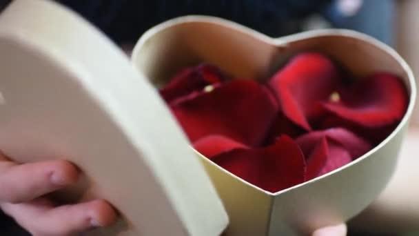 rot geschenk schoen tag valentinsgruss person