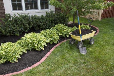 Design, Saison, Gras, Rasen, Frühling, Außenbereich - B11047016