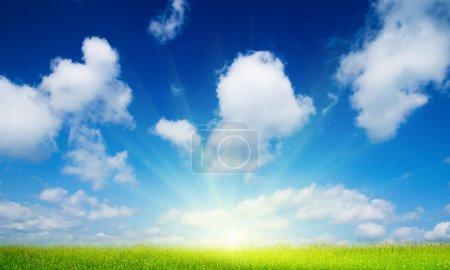 grün, Bild, weiß, Blau, Hintergrund, Bunt - B4607835