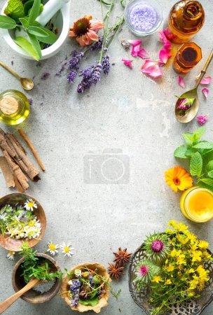 Hintergrund, Stein, Gesundheit, Natur, Garten, Kräuter - B484579648