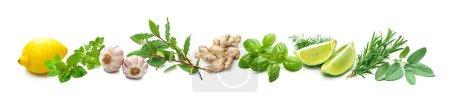 grün, weiß, Hintergrund, Kopie, Raum, Isoliert - B476477510