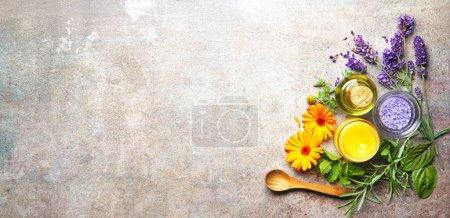 Hintergrund, Stein, Gesundheit, Natur, Garten, Kräuter - B484579134