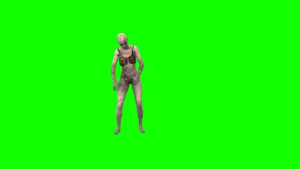 Video B69111291