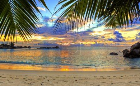 hintergrund himmel urlaub reise palme sommer